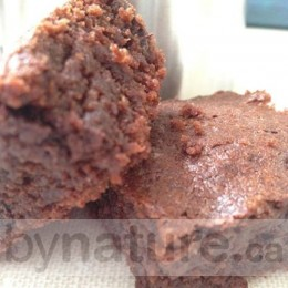 Snappy Snack Lactation Cookie Mix, Double Chocolate Brownie