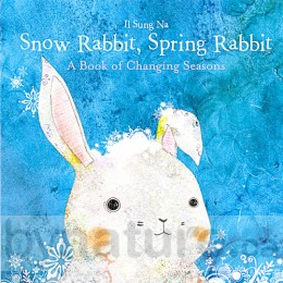 Snow Rabbit, Spring Rabbit - Board Book