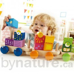 Wooden Fantasia Blocks Train (17 pcs)