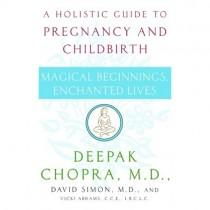 A Holistic Guide to Pregnancy & Childbirth