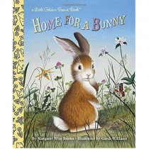 Home for a Bunny, Board Book