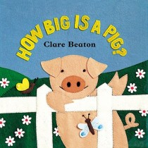 How Big is a Pig, Board Book