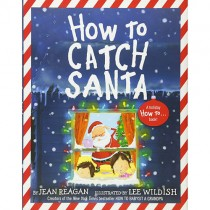 How to Catch Santa, Hardcover