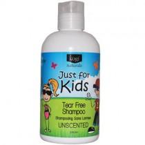 Kogi Naturals Shampoo, Unscented