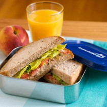 LunchBots Stainless Lunch Containers, Uno (blue)