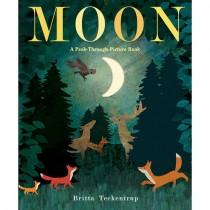 A Peek-Through Picture Book: Moon