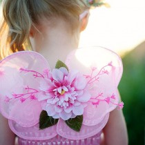 Pink Blossom Wings