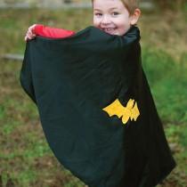 Reversable Dress-up Cape, Spider/Bat