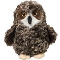 Shrill Saw-Whet Owl