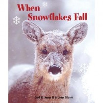 When Snowflakes Fall, Board Book