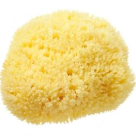 100% Natural Sea Sponge